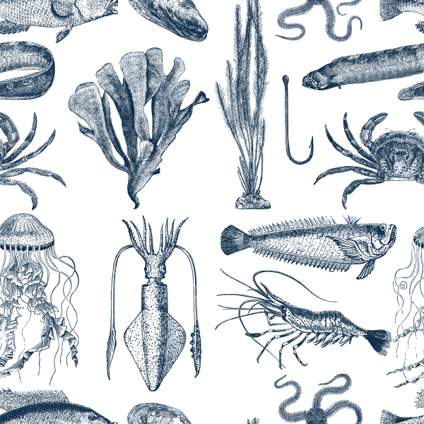 sealife_pattern